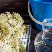recept-zelf-vlierbloesem-siroop-maken