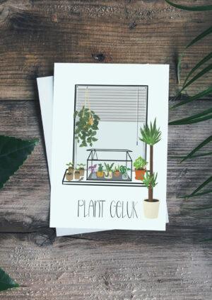 ansichtkaart-plant-geluk